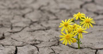 O Ponto de Virada: é hora de começar a pensar no seu